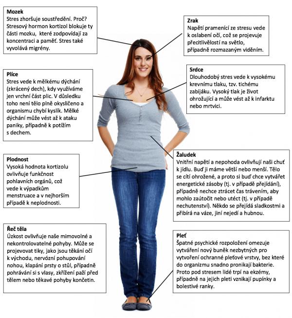 8 příznaků, jak stres ovlivňuje vaše tělo. Hrozí vám nebezpečí?